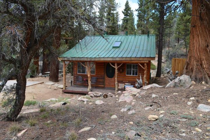 Pet Friendly Angelus Oaks Airbnb Rentals