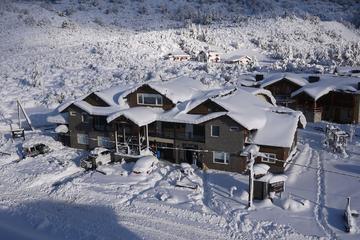 Pet Friendly Ski Sur Apartments