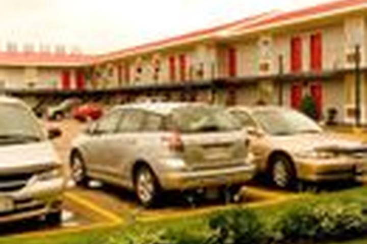 Pet Friendly Seelys Motel