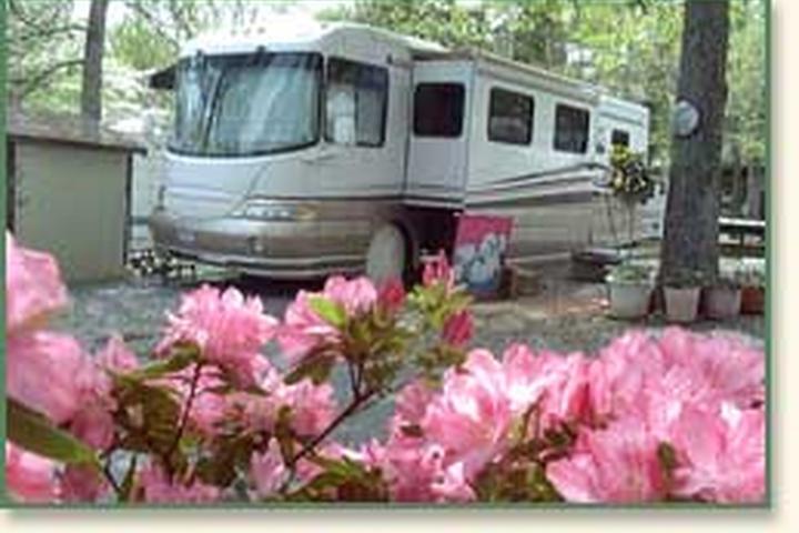Pet Friendly High Rock Lake Marina and Campground