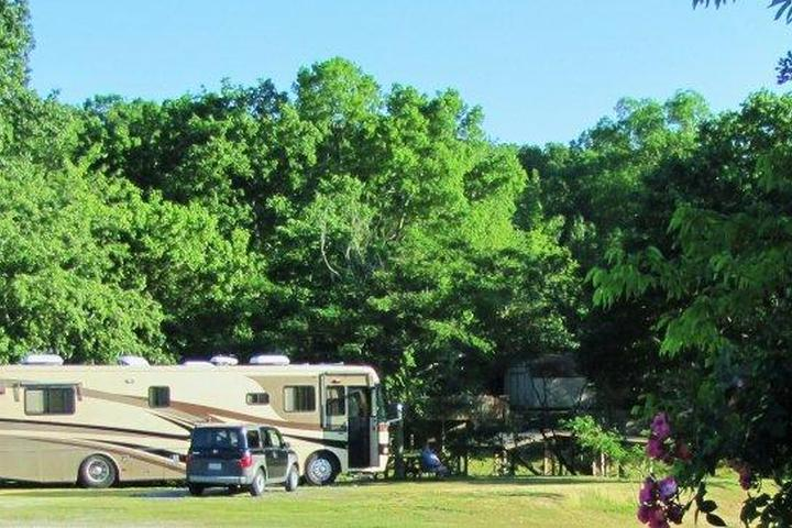 Pet Friendly Young's Lakeshore RV Resort