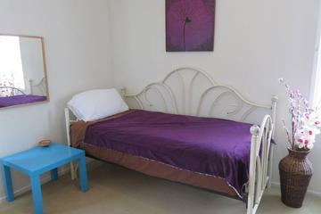 Pet Friendly La Palma Airbnb Rentals