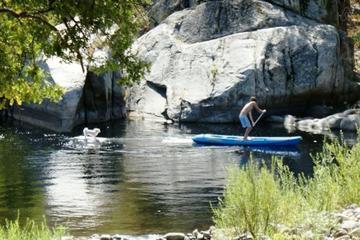 Pet Friendly Three Rivers Airbnb Rentals