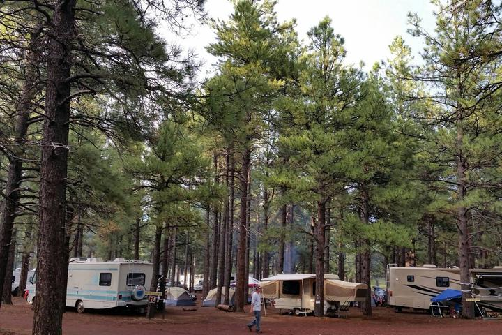 Pet Friendly Fort Tuthill Campground