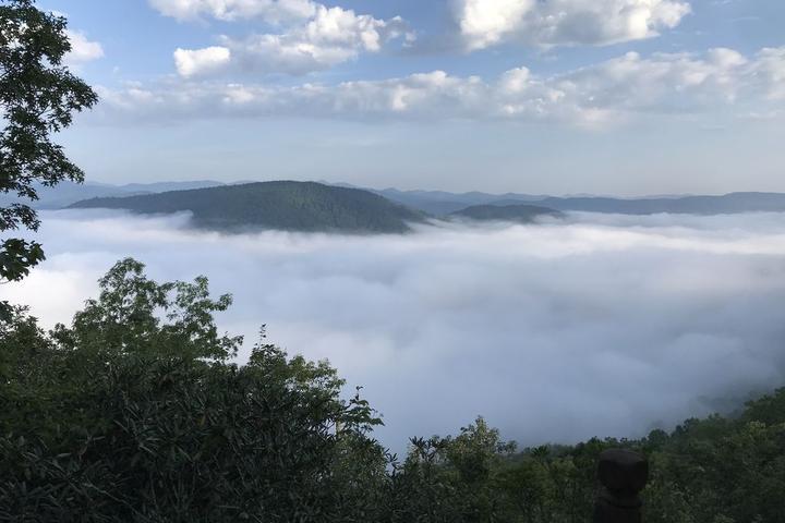 Pet Friendly Cloud 9 at Jeter Mountain