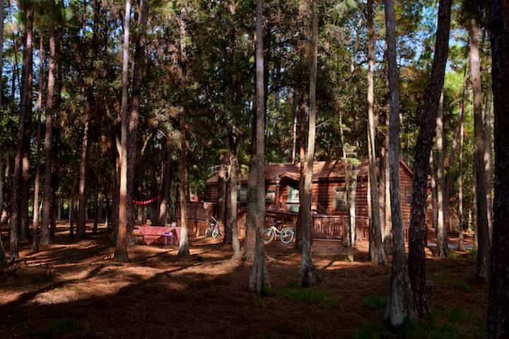 Pet Friendly Disney's Fort Wilderness Resort & Campground