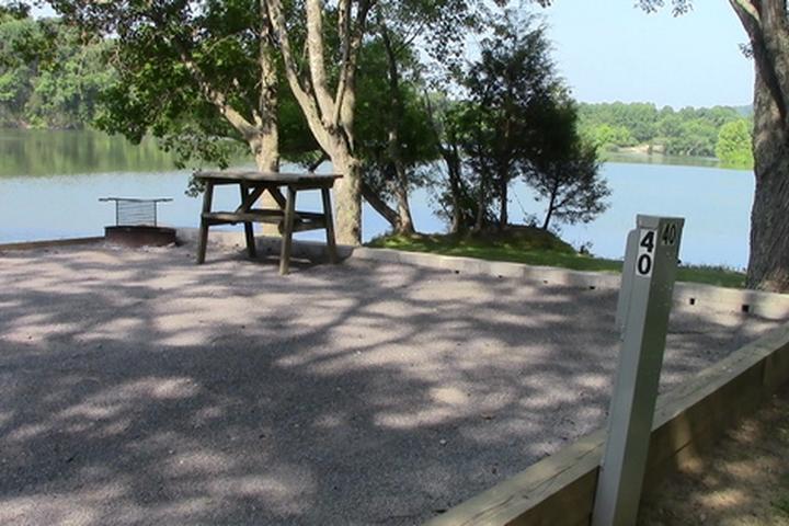 Pet Friendly Salt Lick Creek Campground
