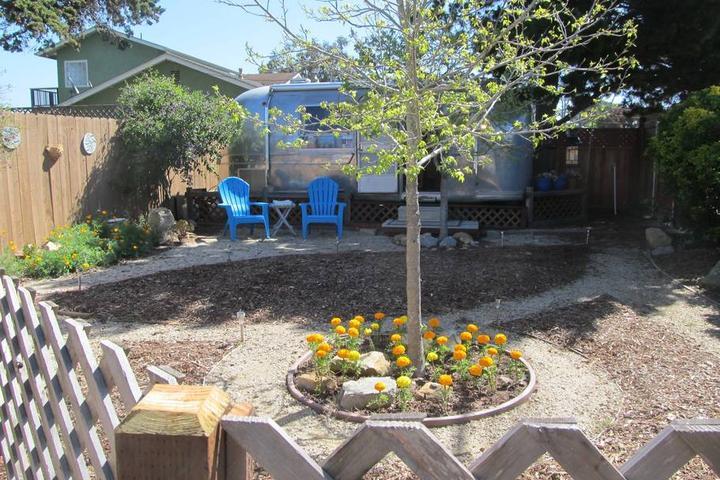 Pet Friendly Los Osos Airbnb Rentals