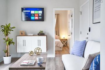 Pet Friendly Fullerton Airbnb Rentals