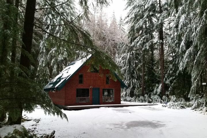 Pet Friendly Crystal Mountain Cozy Cabin