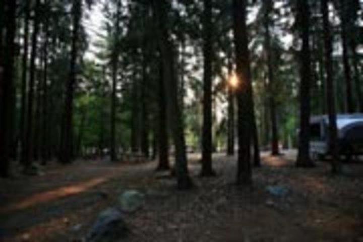 Pet Friendly Burlingame State Park Campground