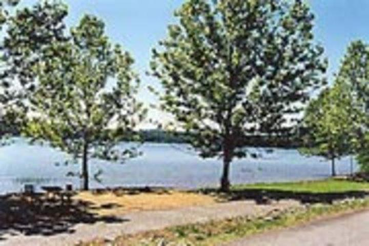 Pet Friendly Sweetwater Cg Campground