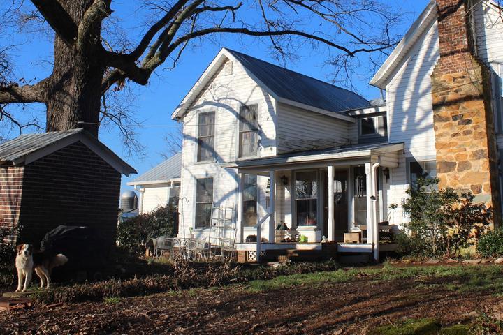 Pet Friendly Hillsborough Airbnb Rentals