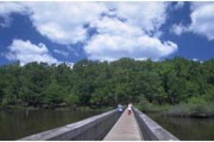 Pet Friendly Lake Darbonne State Park Campground