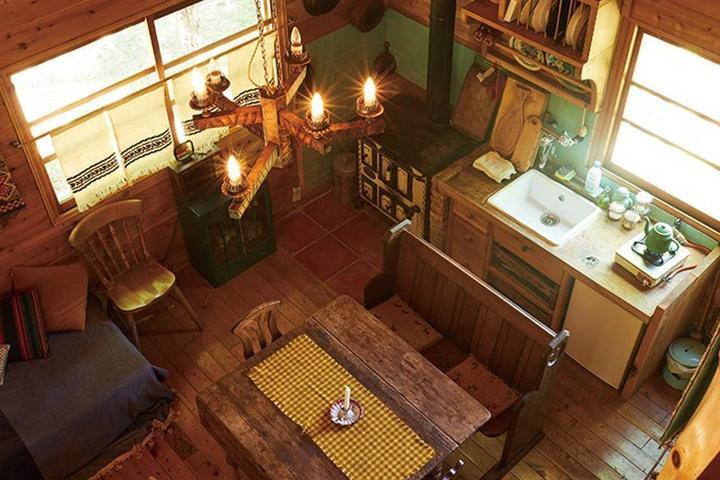 Pet Friendly Ina Airbnb Rentals