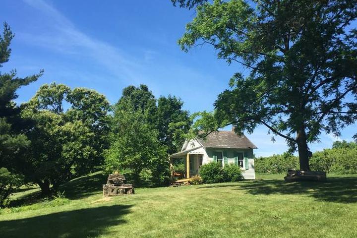 Pet Friendly Pipersville Airbnb Rentals
