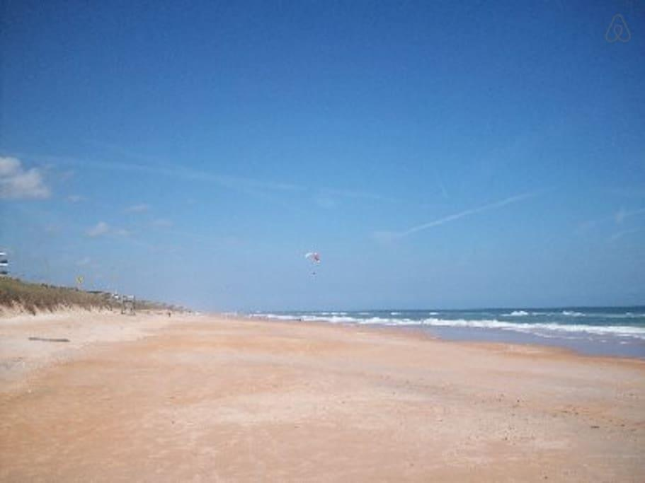 Flagler Beach Dog Friendly Rentals