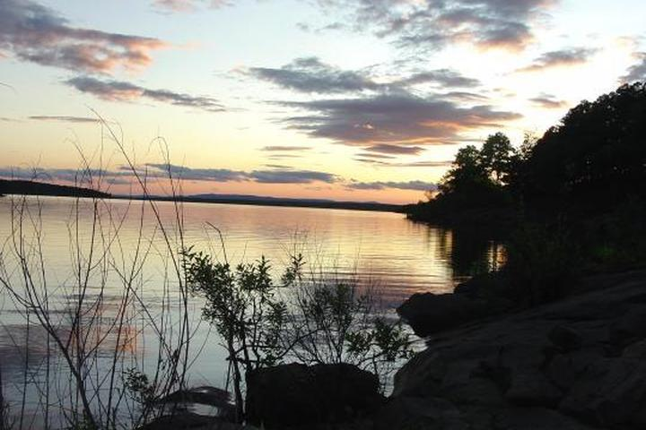 Pet Friendly Carter Cove Campground