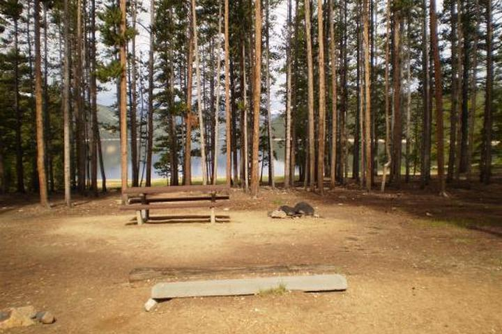 Pet Friendly Baby Doe Campground