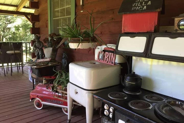 Pet Friendly Temple Airbnb Rentals