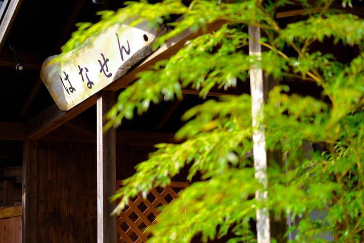 Pet Friendly Yufuin Airbnb Rentals
