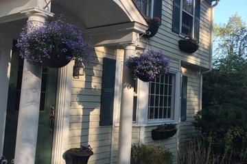 Pet Friendly Westport Airbnb Rentals