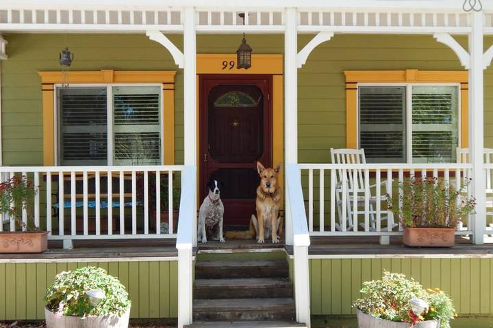 Pet Friendly Windsor Airbnb Rentals