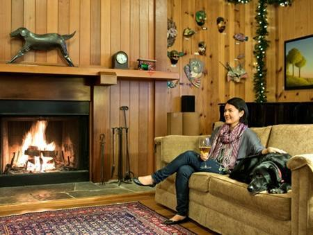 top pet friendly hotels worldwide bring fidopet friendly stanford inn by the sea in mendocino, ca
