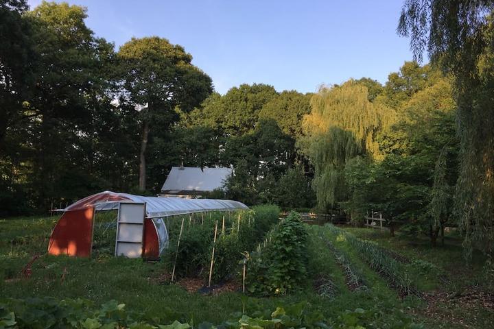 Pet Friendly East Haven Airbnb Rentals