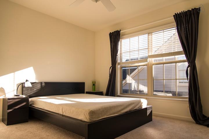 Pet Friendly Canton Airbnb Rentals