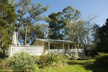 Pet Friendly Woodend Cottage