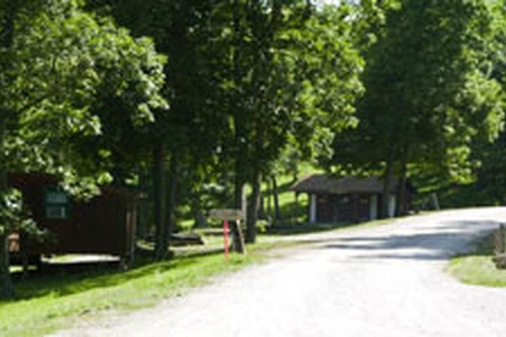 Pet Friendly Lake Paradise Resort