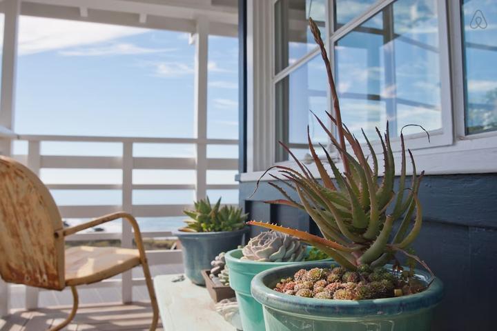 Pet Friendly Stinson Beach Airbnb Rentals