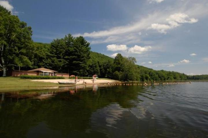 Pet Friendly Taconic State Park Campground (Rudd Pond Area)