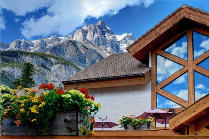 Pet Friendly Banff Airbnb Rentals