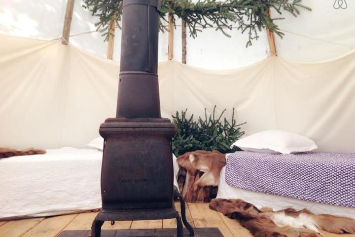 Pet Friendly Fiskdale Airbnb Rentals