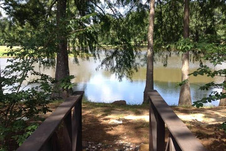 Pet Friendly Calhoun Airbnb Rentals