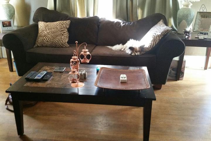 Pet Friendly Bastrop Airbnb Rentals
