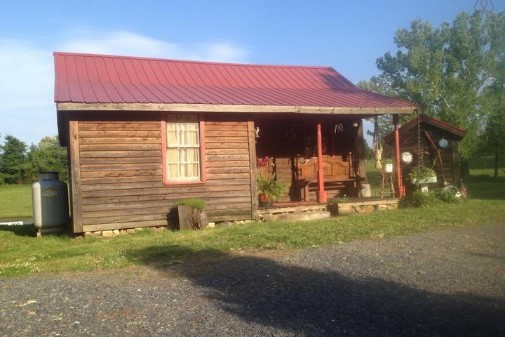 Pet Friendly Seagrove Airbnb Rentals