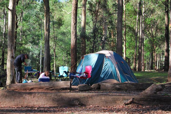 Pet Friendly Campgrounds in Coolangatta, AU - Bring Fido