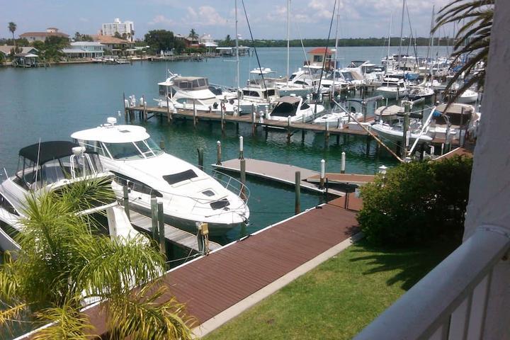 Pet Friendly Clearwater Beach Airbnb Rentals