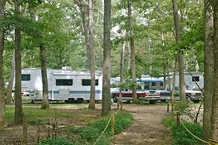 Pet Friendly Country Oaks Campground