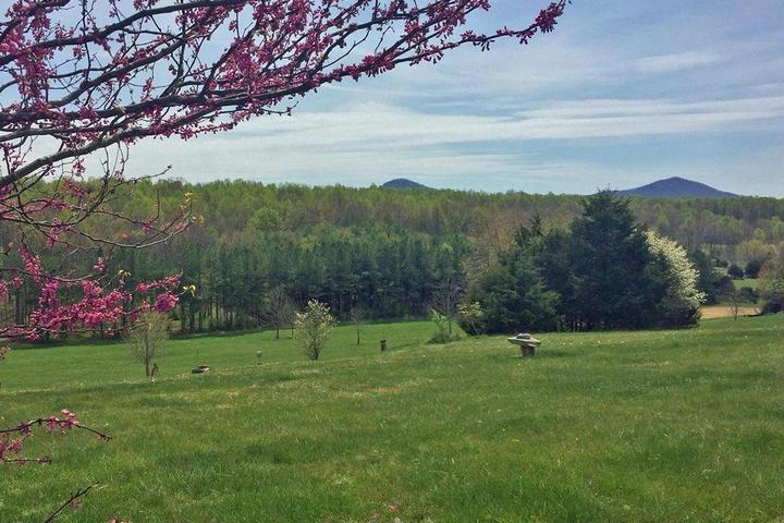 Pet Friendly Rose Cottage at Steeles Tavern