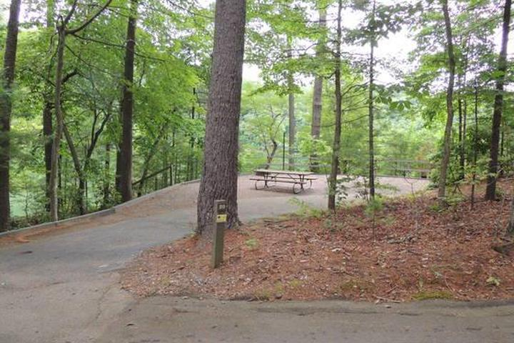 Pet Friendly Horseshoe Point Campground