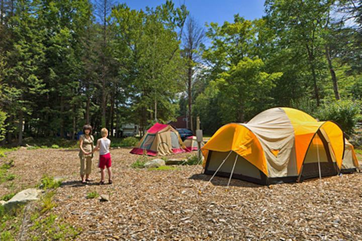 Pet Friendly Hemlock Hill Camp Resort
