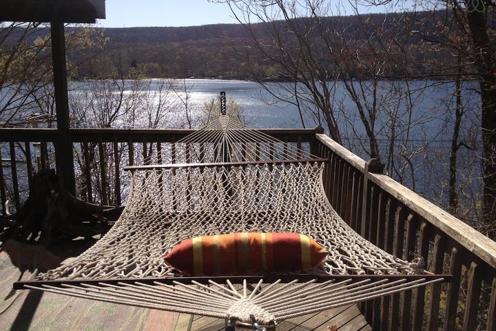 Pet Friendly Pine Island Airbnb Rentals