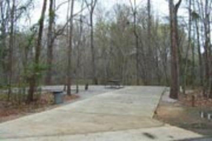 Pet Friendly Isaac Creek Campground