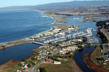 Pet Friendly Moss Landing KOA