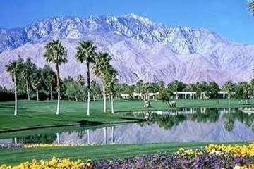 Pet Friendly Desert Princess Country Club Condo