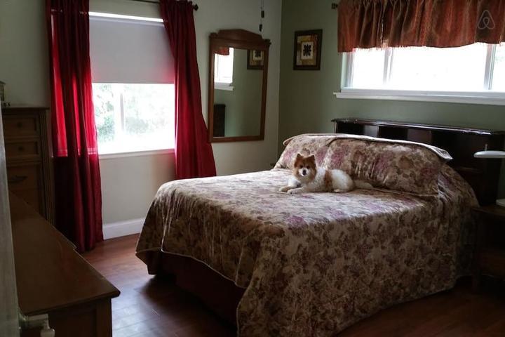 Pet Friendly Whittier Airbnb Rentals
